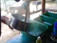 camp wash dishes